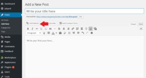 Bluehost WordPress Add Media 1
