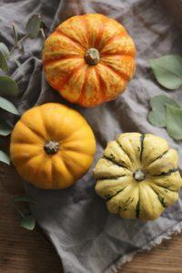 Pumpkins from Makelight Food Photography Workshop