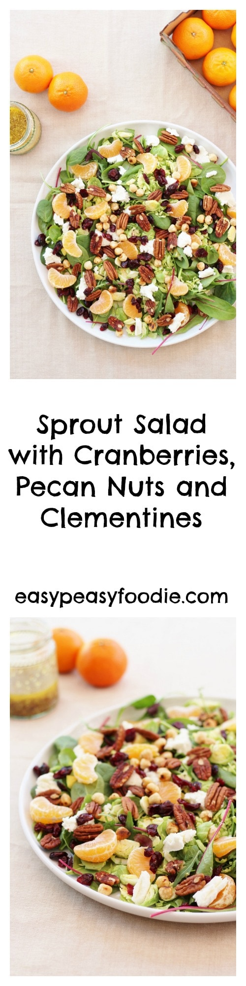Sprout Salad with Cranberries, Pecan nuts and Clementines - pinnable image for Pinterest