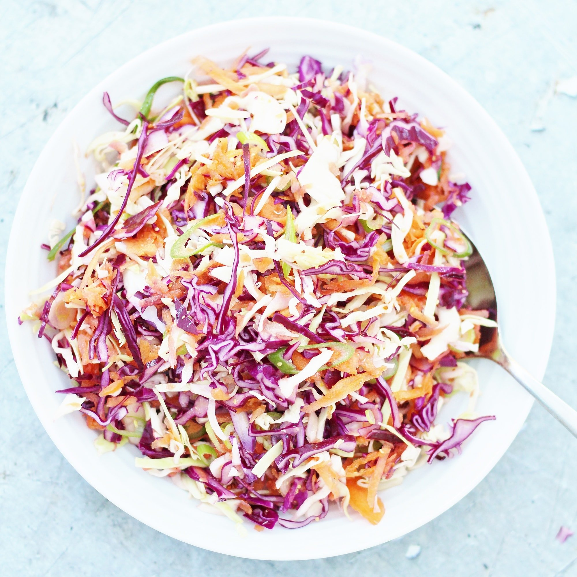 Easy No Mayo Coleslaw Dairy Free Egg Free Vegan Easy Peasy Foodie