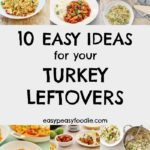 10 Easy Ideas for your Turkey Leftovers - pinnable image for Pinterest
